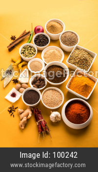 Raw Indian Spices or masala Powder