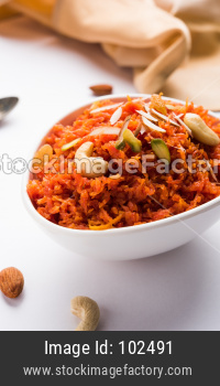 Gajar Halwa Or Carrot sweet dessert