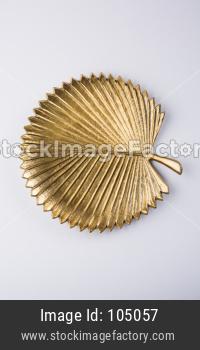Empty golden designer ceramic plate