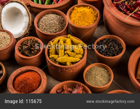 Indian Spices in terracotta pots