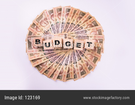 Indian Currency and Saving OR Budget concept