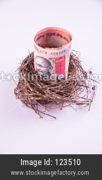 Indian rupee rolls notes in bird's nest. New business starting by banknotes