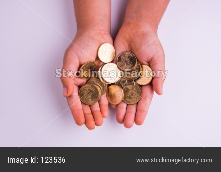 Indian coins in open palm
