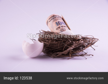 One thousand indian rupee note Coming Out from a Broken Egg in the Nest Against White Background