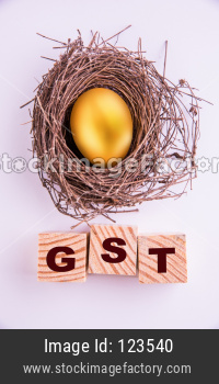 golden egg and GST word written on wooden cube, isolated