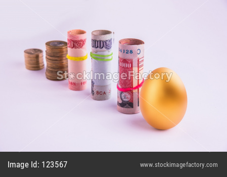 Golden egg with Indian currency Note rolls