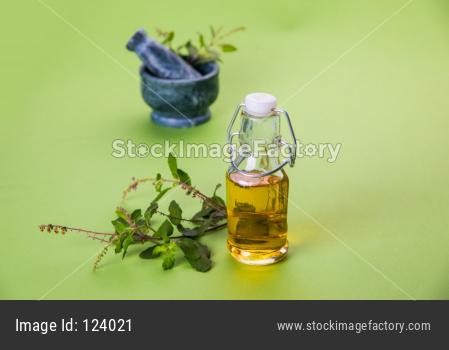 Ayurvedic Tulsi oil OR Holy Basil Oil