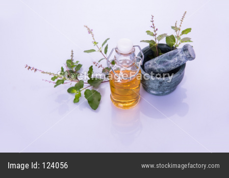 Ayurvedic Tulsi oil OR Holy Basil Oil