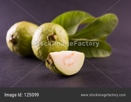 Fresh green Guava fruit / Amrood / Jaam / Peru