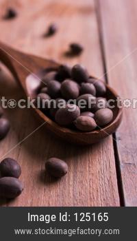 Raw Lotus Seed / kamal katta