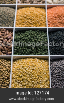 Indian Beans,Pulses,Lentils,Rice and Wheat grain