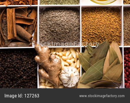 Indian Spices in white wooden box with cells, selective focus.
