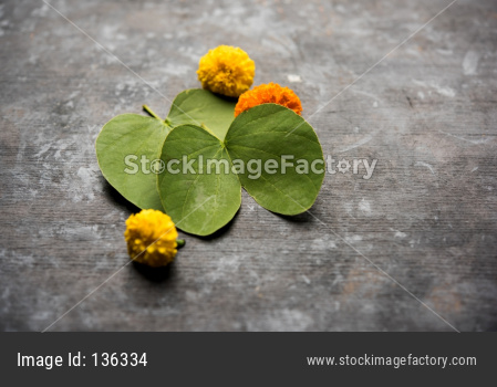 Dussehra Greeting Card with Apta leaf and marigold flower
