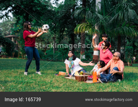 Indian Family enjoying Picnic while playing / catching ball