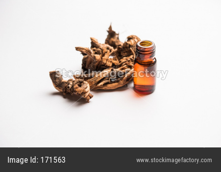 Ayurvedic Chitrak essential Oil in a bottle. It's an extract of plumbago zeylanica.